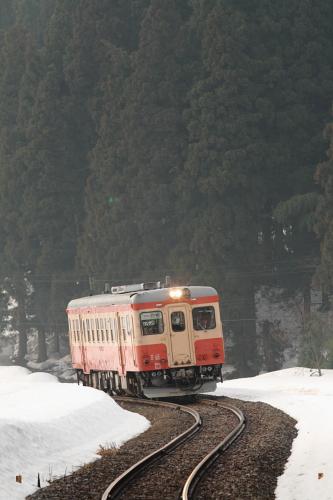 20100330_10.JPG